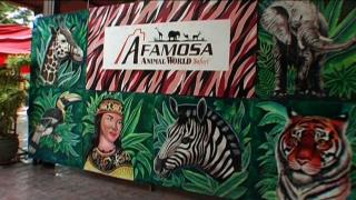 A'Famosa Safari Wonderland in Malacca, Malaysia